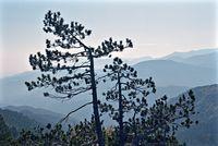024-5 paysage